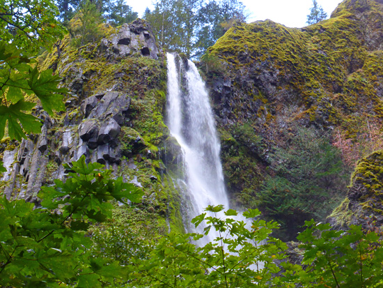 Starvation Creek Falls is one of 4 waterfalls in the area